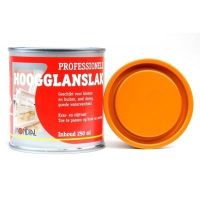 Foto van Mondial Oranje Hoogglans 250ML