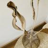Bild von Strelitzia Blätter - 5 Stück