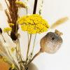 Bild von FIELD FLOWERS