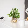 Afbeelding van Apekop Planten Pot - Goud