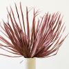 Afbeelding van Palmblad Pink Frosted - 2 stuks