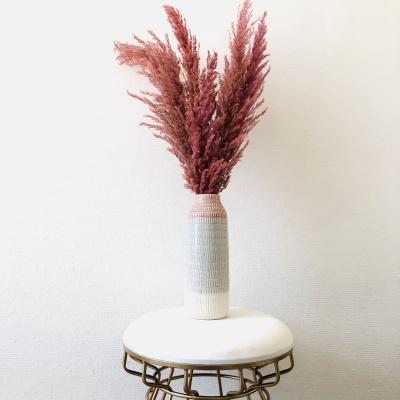 Pampasgras Gedroogd Roze - 4 stuks 110cm