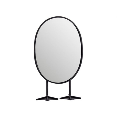 Spiegel eend 15x8.5x27cm zwart