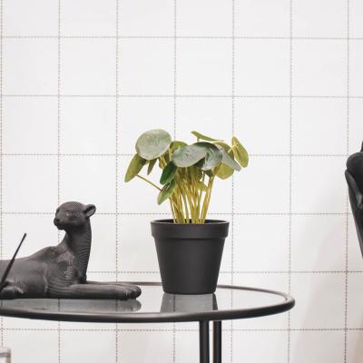 Künstliche Pflanze - Pfannkuchen-Anlage -11x15x25cm