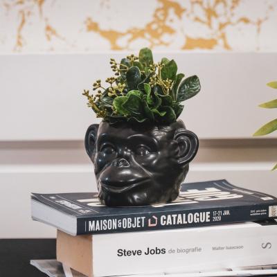 Apekop pflanzen pot-black-15x14x8 cm