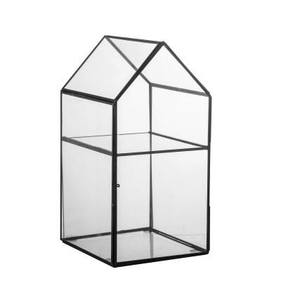 Tiff display huis helder glas