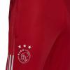 Afbeelding van Ajax Trainingsset