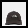 Afbeelding van The North Face Dad Cap Norm Hat