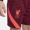Afbeelding van Liverpool FC Strike Zomerset Kids