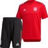 Afbeelding van FC Bayern München Zomerset