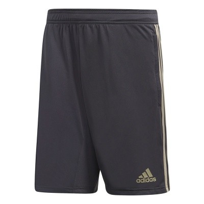 Foto van Ajax Amsterdam Training Short