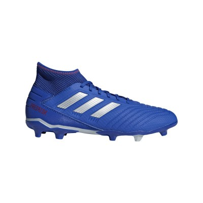 Foto van Adidas Predator 19.3 FG Blauw