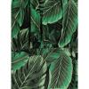 Afbeelding van Collectif | Haltertop Kaylee Tropics groen