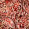 Afbeelding van Chenaski | overhemd seventies, Paisley brown