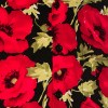 Afbeelding van Chenaski - Overhemd korte mouw, Poppy, black red