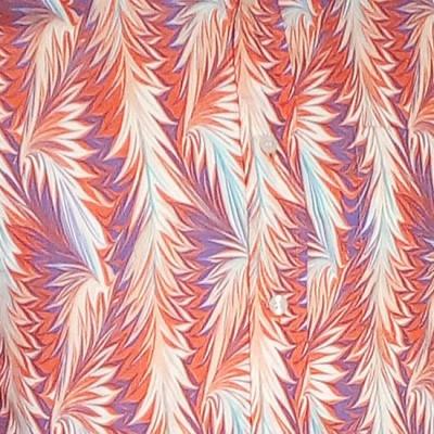 Foto van Overhemd retro, Feathers creme oranje