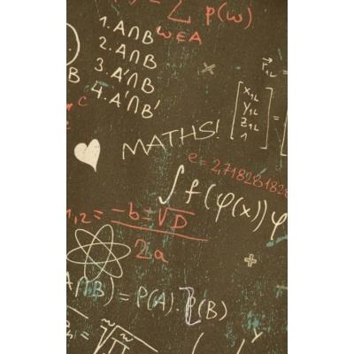 Foto van Overhemd korte mouw Maths geek formulas chalkboard