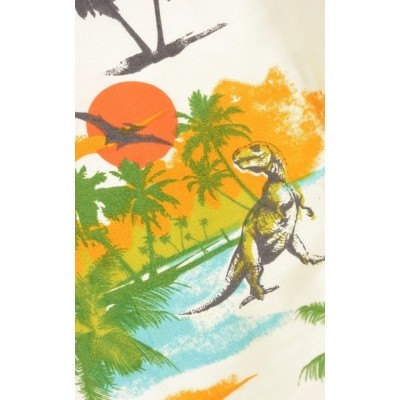 Foto van Jurk retro dinosaur sunset beach