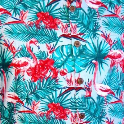 Foto van Overhemd korte mouw, Flamingos jungle licht blauw