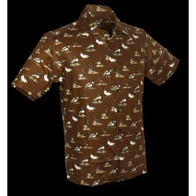 Foto van Overhemd korte mouw Ducky Duck bruin