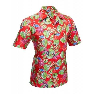 Foto van Overhemd korte mouw Colibri rood
