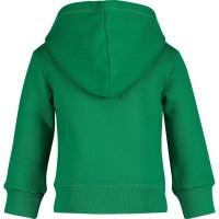 Afbeelding van Dsquared2 DQ03EB baby vest groen