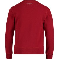 Picture of Dsquared2 DQ03AF kids sweater red