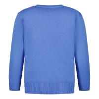 Afbeelding van Ralph Lauren 320799887 baby trui blauw