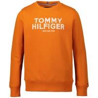 Afbeelding van Tommy Hilfiger KB0KB04949 kindertrui oranje