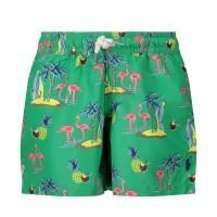 Afbeelding van Ralph Lauren 320785594 baby badkleding groen