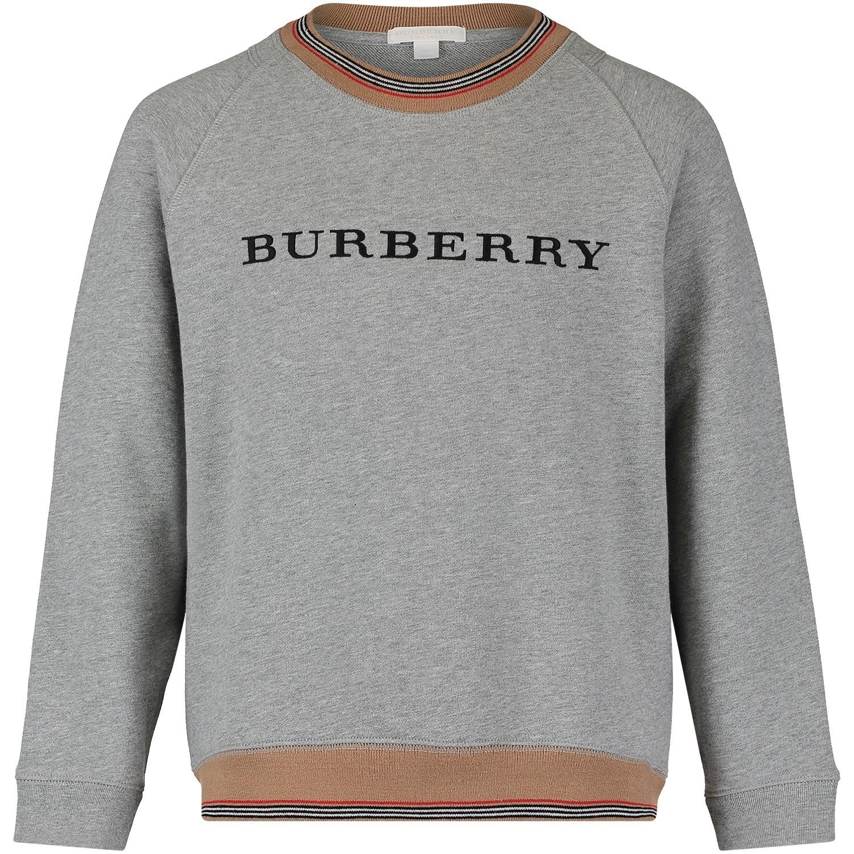 Afbeelding van Burberry 8002427 kindertrui grijs