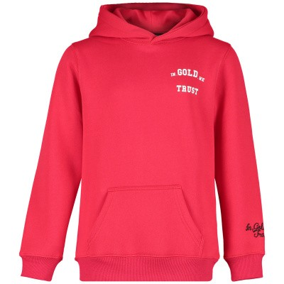 Picture of in Gold We Trust FAH027KIDS kids sweater red