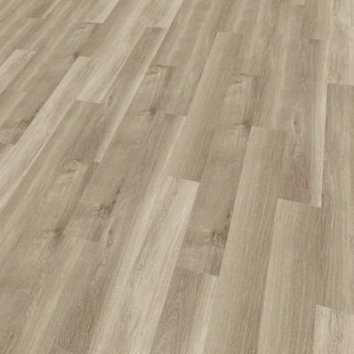 mFLOR 41817 Broad Leaf Smoky Sycamore