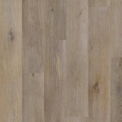 Afbeelding van Aspecta Elemental Dryback XL Plank Iconic Ohrid D476504