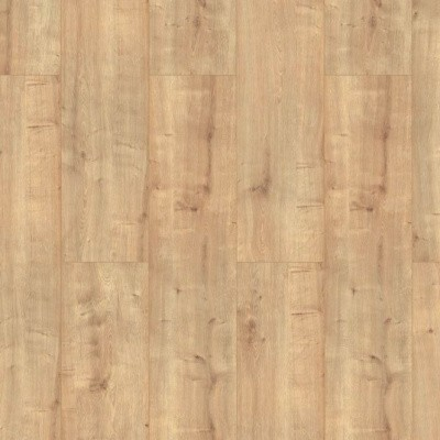 Classen Oak Dark Beige XL 52541