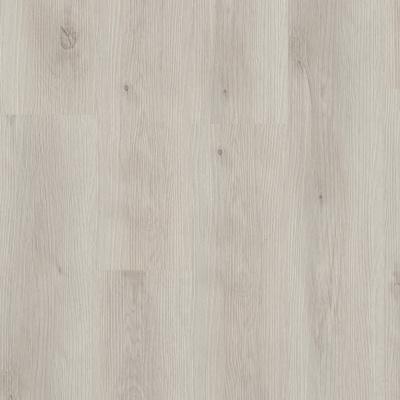 Budget Line Phoenix Oak 3502 Rigid Click PVC