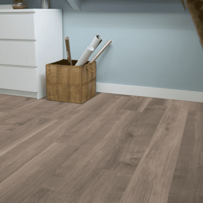 Foto van mFLOR 41817 Broad Leaf Smoky Sycamore