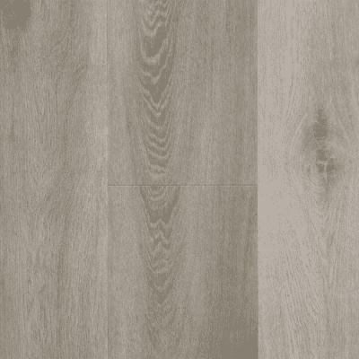 Douwes Dekker Ambitieus Riante Plank Pepermunt Click PVC 04851