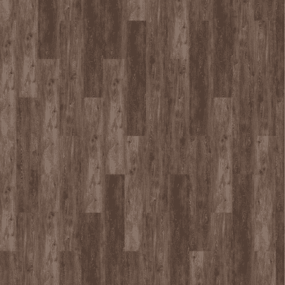 Foto van mFLOR 72141 Reservoir Oak Chard