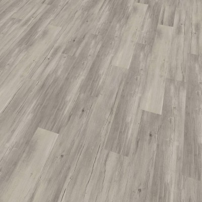 Foto van mFLOR 62012 Ribble Pine Yarrow
