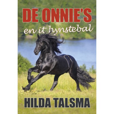 De Onnie's en it hynstebal e-boek