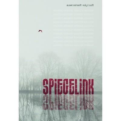 Foto van Spiegelink