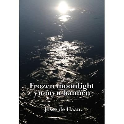 Foto van Frozen moonlight yn myn hannen