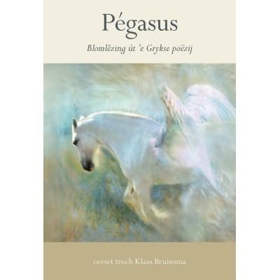 Pégasus e-boek