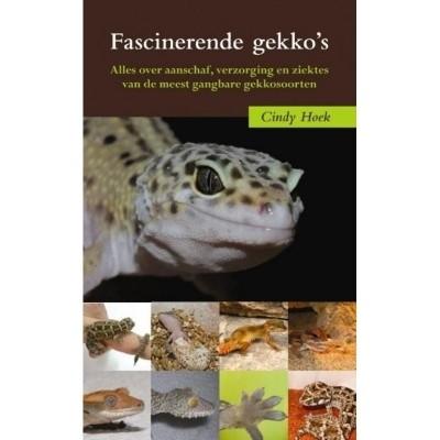 Foto van Fascinerende gekko's