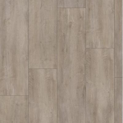 Foto van Kronotex Mammoet 4985 Oriental Oak Grey