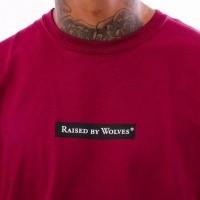 Afbeelding van Raised by Wolves Registered Box Logo Tee RBWFW18501 t Shirt Harvard Jersey