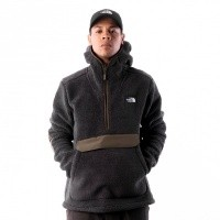 Afbeelding van The North Face M CMPSHR PO HDIE T933QV7GK Hooded WEATHEREDBLCK/NEWTAUPEGRN