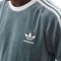 Afbeelding van Adidas COZY TEE DV1623 T shirt vapour steel
