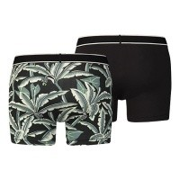 Afbeelding van Levi's Bodywear 985004001-123 Boxershort 200SF hawaiian leaf boxer brief 2p Reef waters